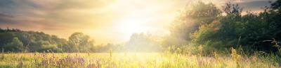 Durch Sonne dein Serotoninspiegel erhöhen