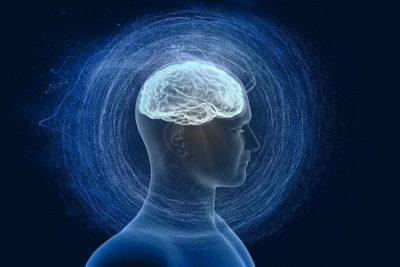 kognitive leistung