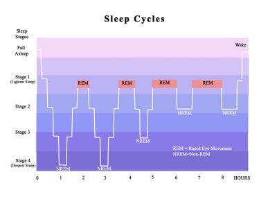 Schlafphasen