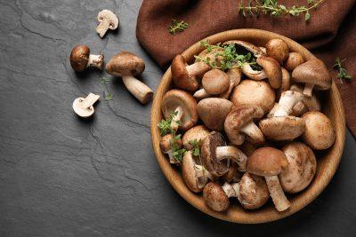 Vitamin B12 in Pilzen