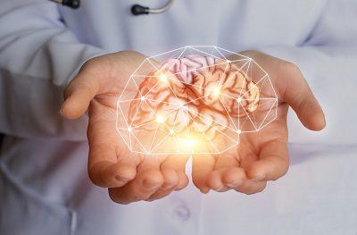 Ginkgi Biloba Gehirn
